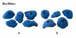 Photo of Blue Ribbon Mini Jugs