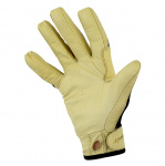 Photo of Sport Glove palm