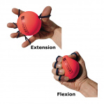 Photo of Exercises for GripSaver